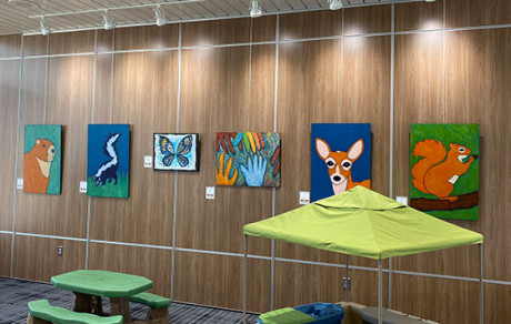 CAK Play Art Gallery Akron Canton Airport